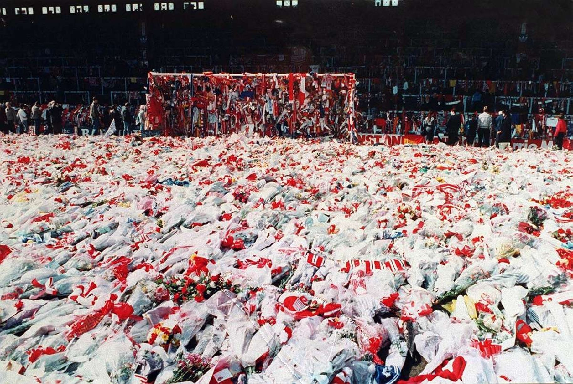 a summary of the movie disaster at hillsborough Like the media in the hillsborough disaster copies of only the executive summary football lettermen react to hbo 'paterno' movie.